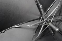 Umbrella Rib Wire