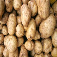 Jyoti Potato