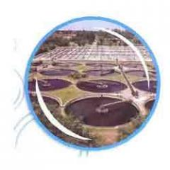 Sewage Water Treatments