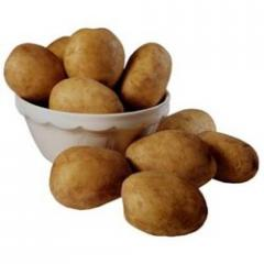 Fresh Potatoes  Fresh Potatoes
