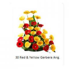 Red & Yellow Gerbera flowers