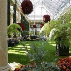 Greenhouse Gardens