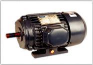 Electric Bare Motor