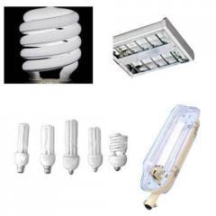 Surya CFL Lamps