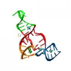 Acid Enzyme