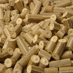 Wood Briquette