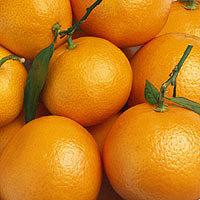 Flower Of Life Orange Peel Herbal Water