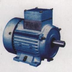 Energy Efficient AC Squirrel Cage Induction Motors