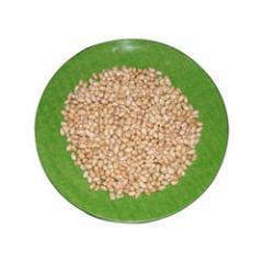 Whole Soya Bean