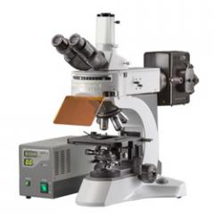 Dewinter Trinocular Fluorescence Microscope