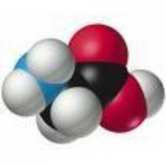 Casein for Pharmaceutical Industries