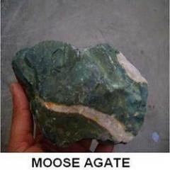 Moose Agate