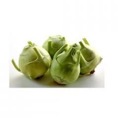 Kohlrabi Turnip