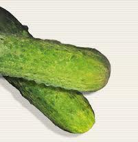 Cucumber gherkins