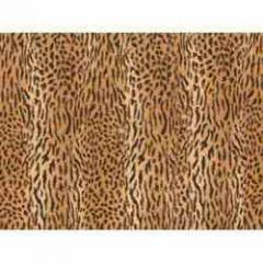 Exotic Print Animal Fabric