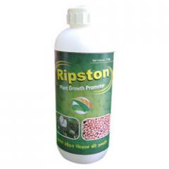 Ripston Product