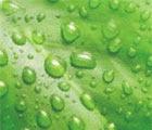 Wetting-Sticking Agent