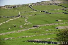 Dales for agricultural purpose