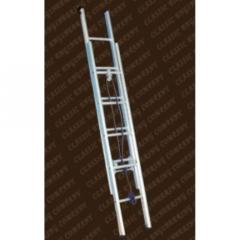 Wall Support Extendable Ladder