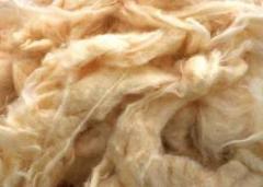 Loose Cotton