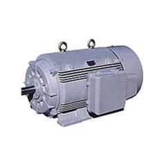 Energy Efficient Motors ( Crompton Greaves )