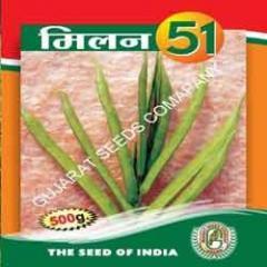 Guwar Seed