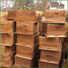 Beehives (Toon Wood)