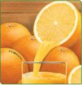 Spray Dried Orange Juice Powder