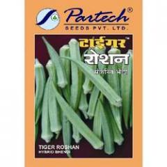 Bhindi Seeds ( T-1,  RAJA )
