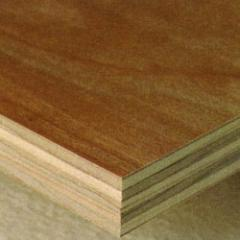 Anti bacterial ply wood