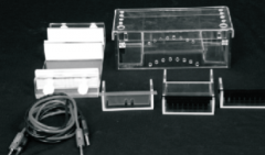 Electrophoresis Equipment & Accessories
