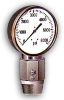 Special Pressure Gauge In SS 304 Casing