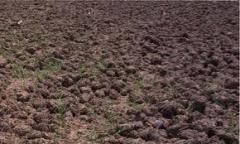 Manure for Soil