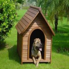 Customized Dog Kennel