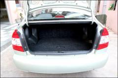 Luggage/Boot Mats