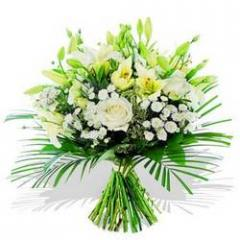 Dazzling Oriental Lilies