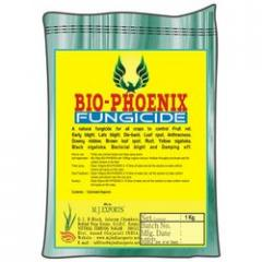 Natural Fungicide