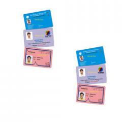 Corporate identity cards
