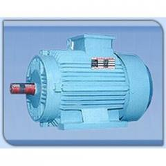 A.C Induction Electric Motor