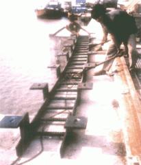 Rubberized Ladder
