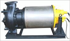 Non Clog Flood Proof Pump sets (ANFP)