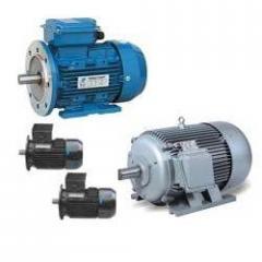 Induction Motor Pump