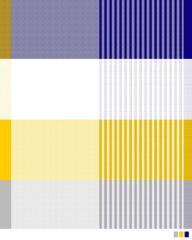 Shirting Pigment Print Fabric