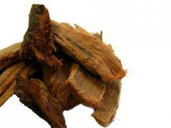 Ashoka Bark Extract