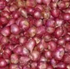 Sambhar Onions
