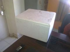 Thermocole Ice Box