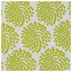 Elegant Printed Fabrics