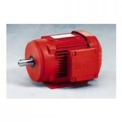 Energy Efficient Electric Motors