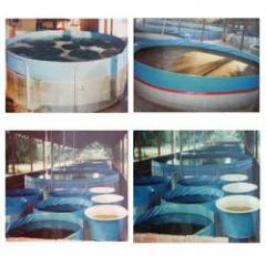 Portable Fish And Prawn Hatcheries