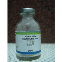 Ampicillin Injections